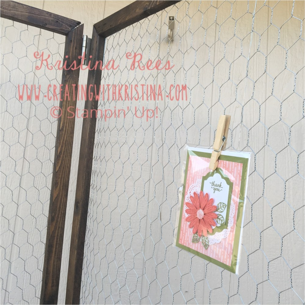 Chicken Wire Display Screen