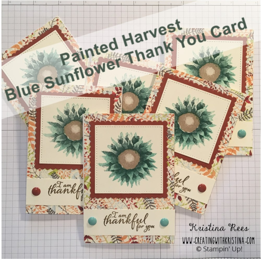 Painted Harvest Blue Sunflower