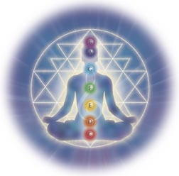 A picture showing the chakras.