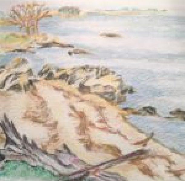 CT Sea Rocks