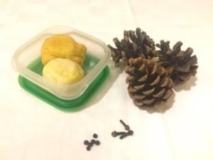 arici simpatici din conuri de brad si plastilina - materiale (350 x 263)