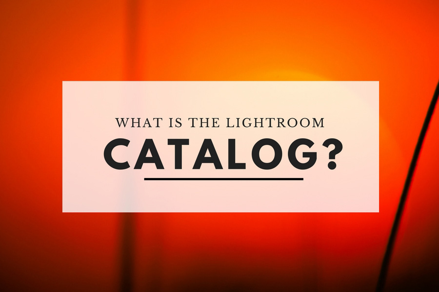 What is the Lightroom Catalog?