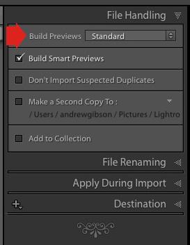 Build previews in Lightroom