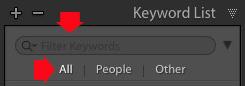 Keyword List panel Lightroom