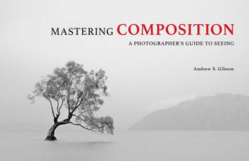 Mastering Composition ebook