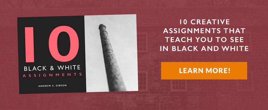 10 Black and White Assignments ebook