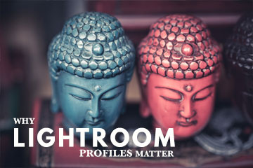 Why Lightroom Profiles Matter