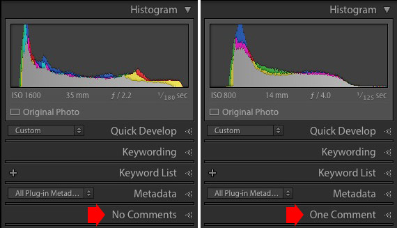 Lightroom comments