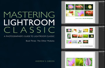 Mastering Lightroom Classic ebooks