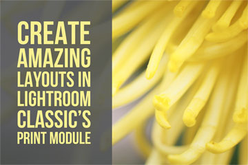 Create Amazing Layouts In Lightroom Classic's Print Module
