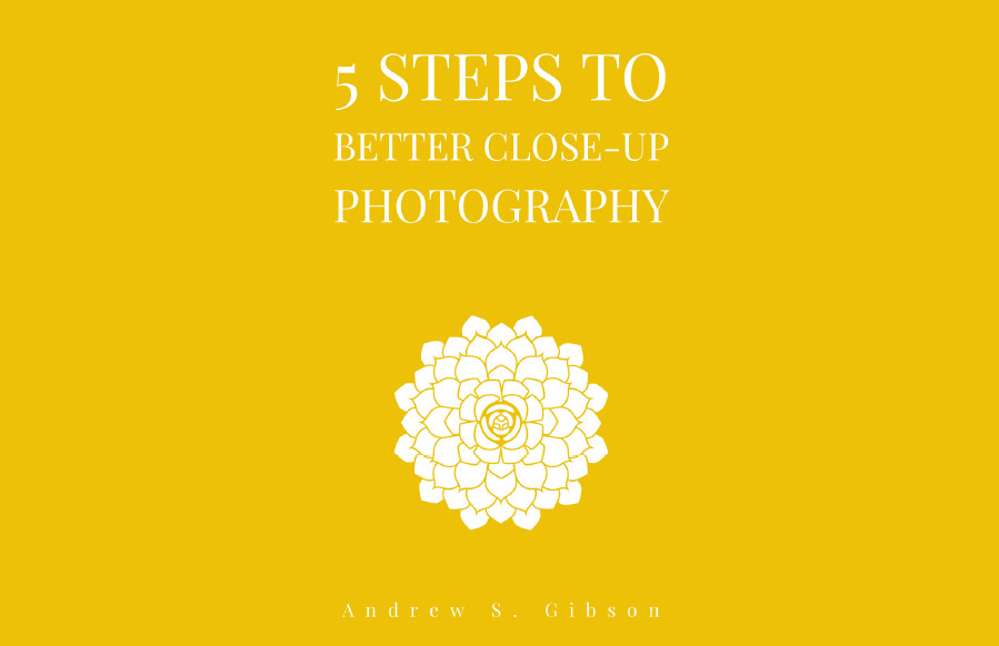 5 Steps to Better Close-Up Photography ebook