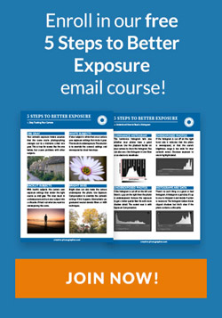 Free exposure email course