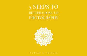 5 Steps to Better Photography ebook