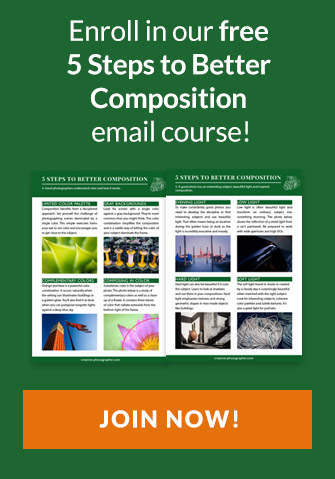 Join our free Composition email course now