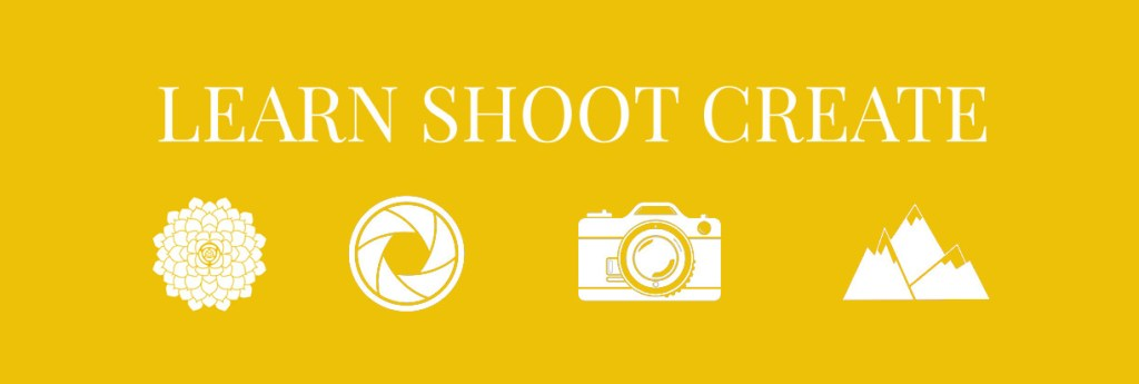 Free photography email courses