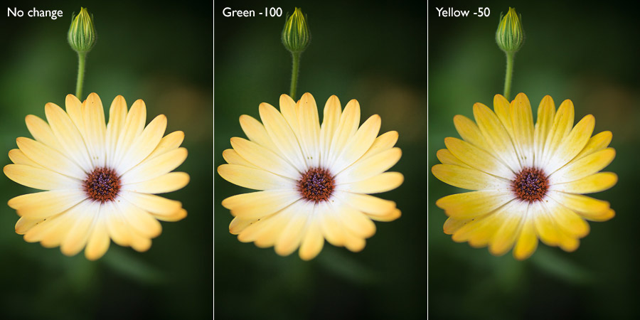 Lightroom Classic color luminance