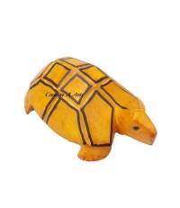 TortoiseYellowSide