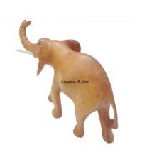 ElephantNaturalBack