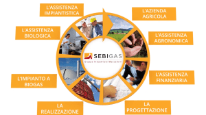 SebiGas – Corporate profile
