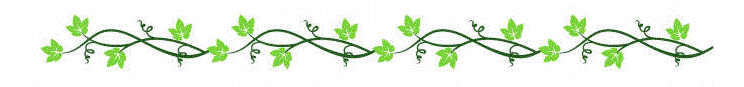 line-ivy