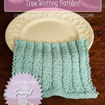 RIBBED FAUXY CABLE BERRY DISHCLOTH – Contributor Post