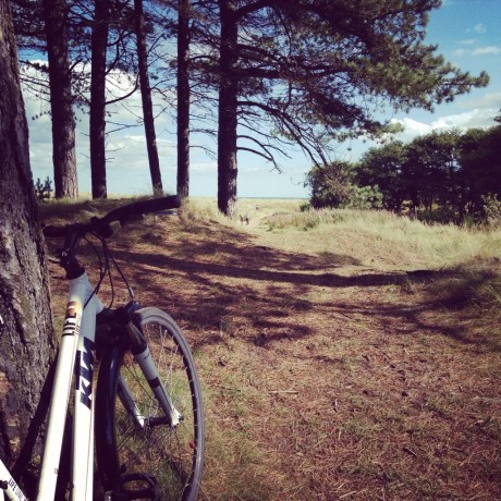 Bikes, cycling, forest, scotland, tentsmuir, fife, dundee, cities, creativity