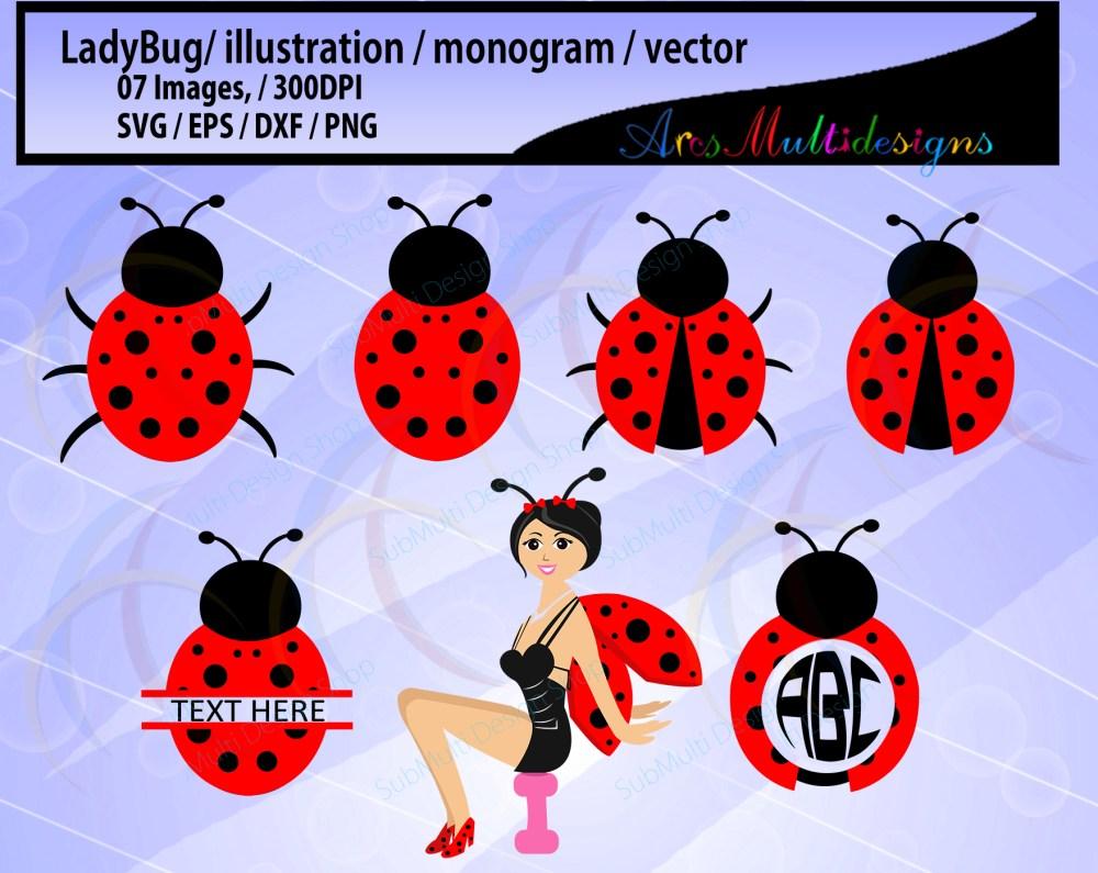 medium resolution of bug clipart