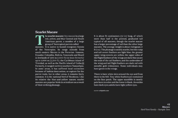 Macaw Fonts 17625684 3