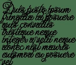Ababil Script Standard Font by Mikrojihad Typefounder