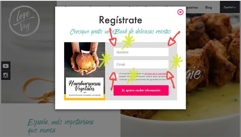 LoveVeg - descargar recetario hamburguesas veganas
