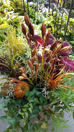 Fall Planter at MN Household