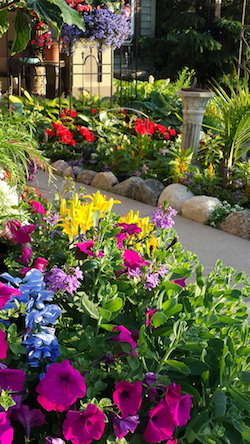 Gardening Services in Minnetonka MN