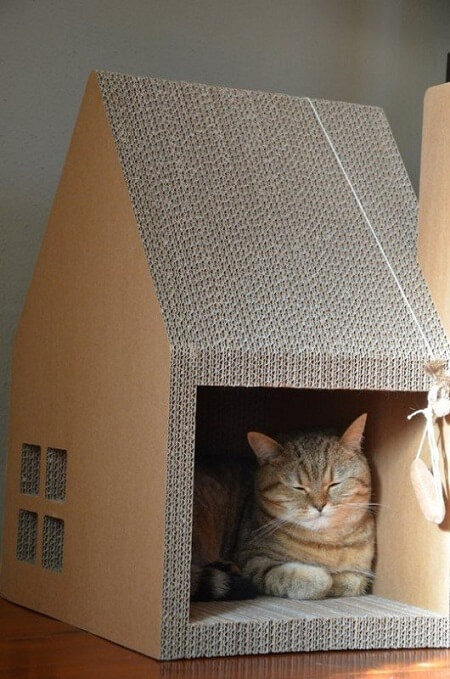 cardboard cat frniture