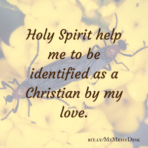 Holy Spirit help me to be identified as a Christian by my love.