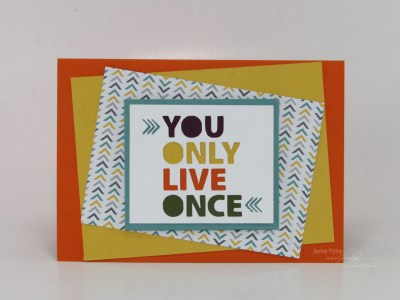 2014_06_creativeJax_ecutter_incolors_You_only_live_once