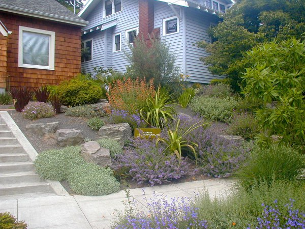 xeriscape with boulders creative
