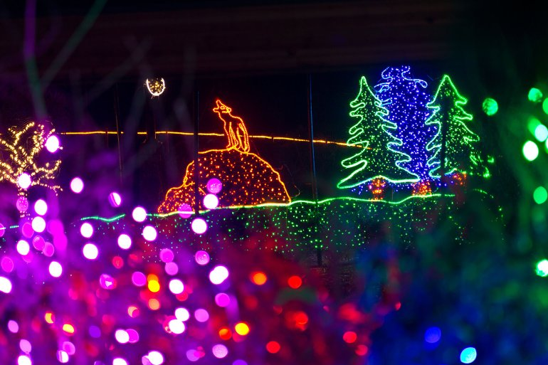 Point Defiance Zoolights