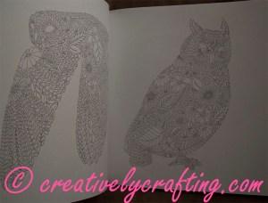 Adult Coloring Book - Animal Kingdom - Millie Marotta
