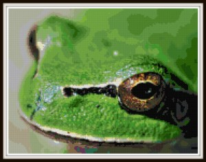 frog-cross-stitch-vsframed
