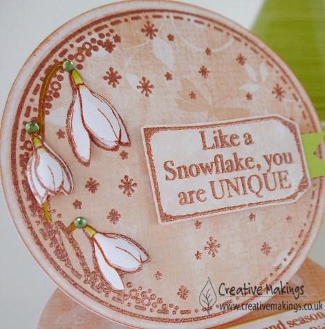 12 feb 16 snowdrop