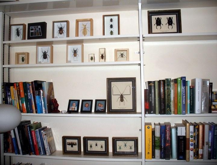 bookshelf_001ednathompson_720x549