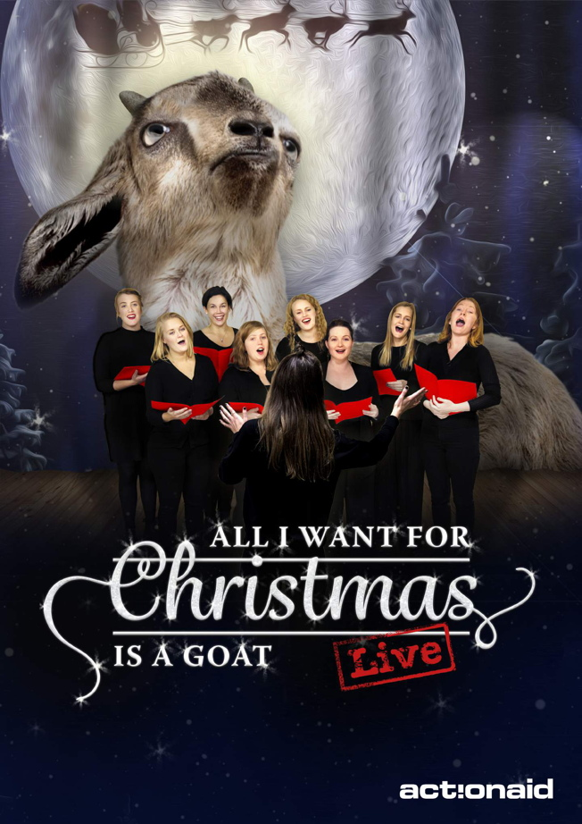 actionaid_christmasgoat