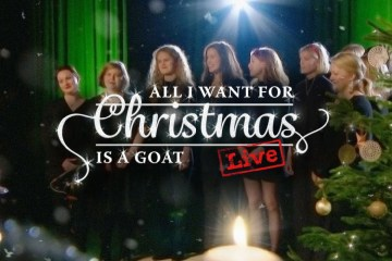 actionaid_christmasgoat_cov