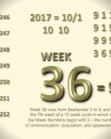 WEEK 36 – The Will To Continue