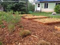 Creative Vegetable Gardener:Building Our New Garden, Part ...
