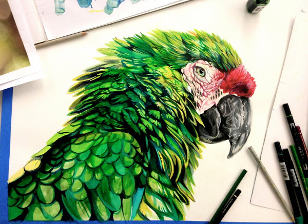 Cool Pen Drawing