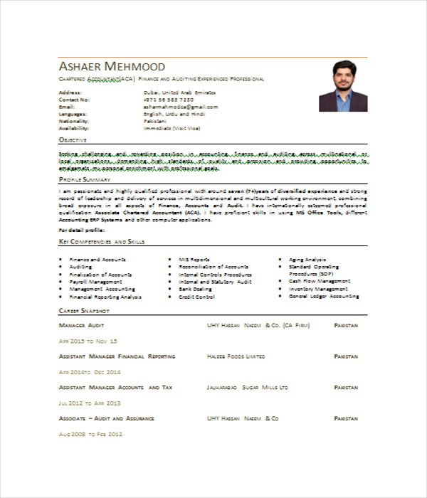 7 Accountant Resume Templates Free Word PDF Document