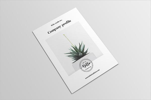 Agency Profile Brochure Template