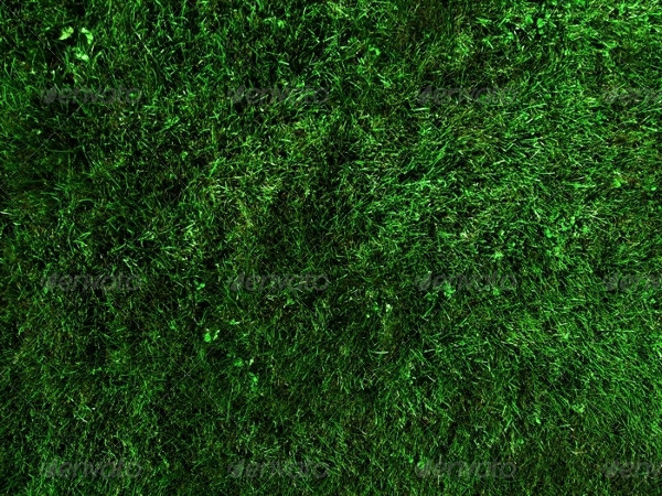 5 Different Lawn Backgrounds