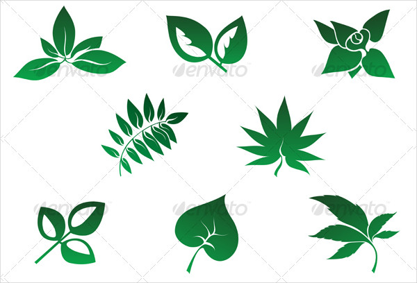 Set of Autumn leaves Icons